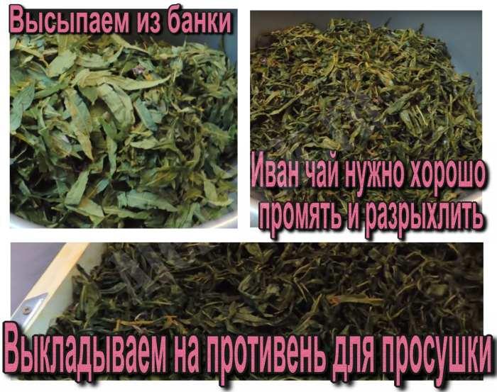 Правильная ферментация иван чая в домашних условиях