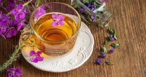 Народная медицина. Лечебные свойства иван чая, кипрея. Противопоказания иван чая для женщин и мужчин