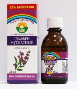 Шалфей лекарственный: лечебные свойства и противопоказания