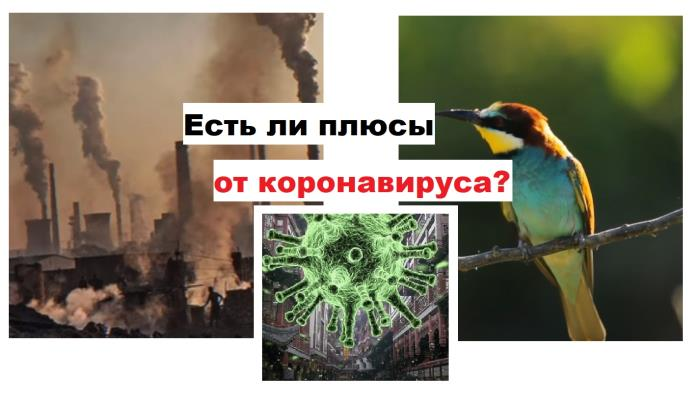 Плюсы от коронавируса для экологии, людей и экономики